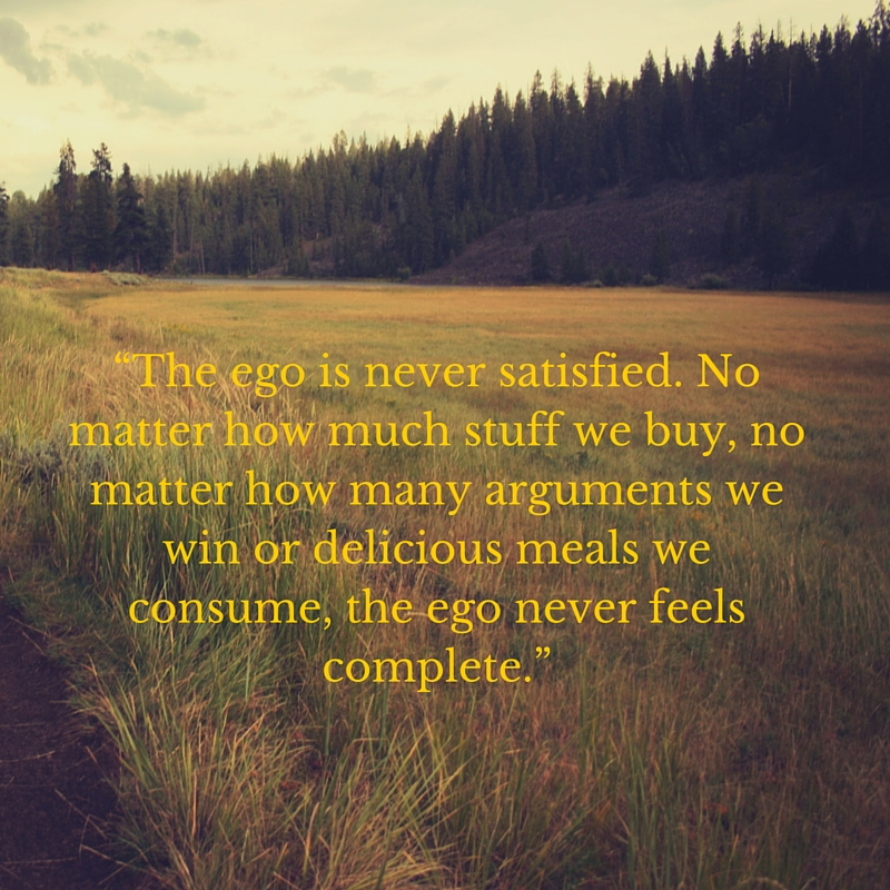 """The ego is never satisfied. No matter how much stuff we buy, no matter how many arguments we win or delicious meals we consume, the ego never feels complete."""